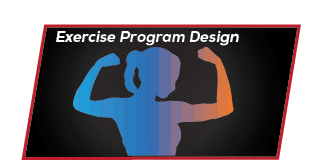 Exercise Prodram Design